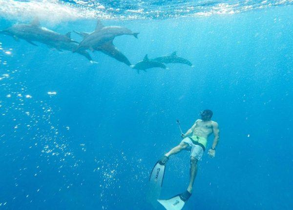 Mauritius explored Dolphin Swim