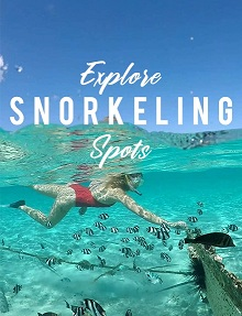 Best Snorkeling Spots in Mauritius